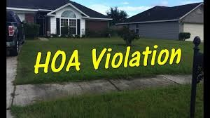 Open Deed Restriction Violation Count as of October 21, 2020